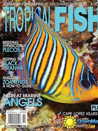 Tropical Fish Hobbyist kansi